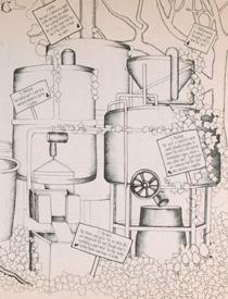 White Rabbit Brewery illustration