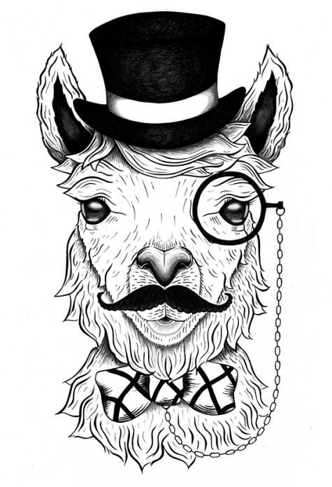Albert the alpaca for Noble Fibres – Melbourne